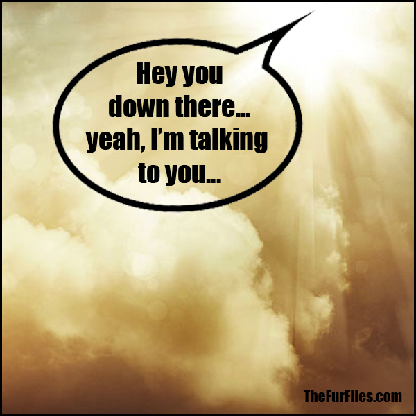 Hey Kids, God Has A Message For You... | TheFurFiles