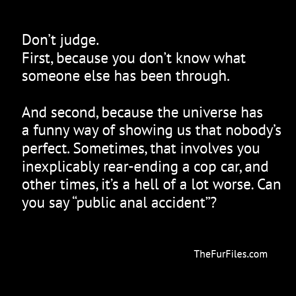 Judge Not Lest Ye Also Be Judgethed (Or Something Like That) | TheFurFiles