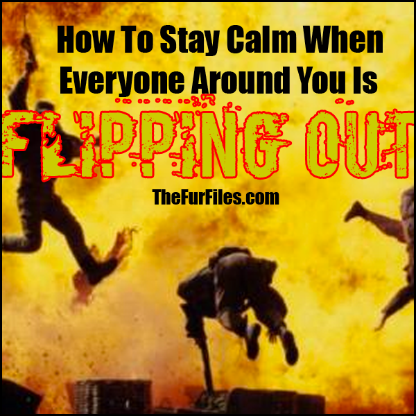 How To Stay Calm When Everyone Around You Is Flipping Out | TheFurFiles